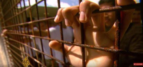 fence asylum